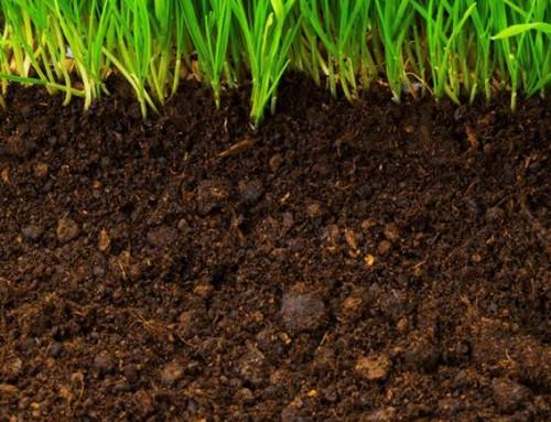 Consultant g otechnique montreal test de sol montr al for Etude de sol prix